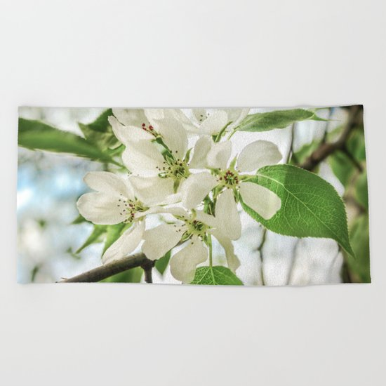 the Apple blossoms Beach Towel