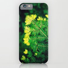 Deep in the Forest Slim Case iPhone 6s
