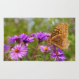 Butterfly and Asters Rug