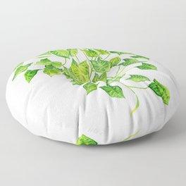 Arrowhead Vine Floor Pillow