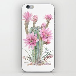 cacti 1 iPhone Skin