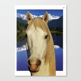 Untitled - horse Canvas Print