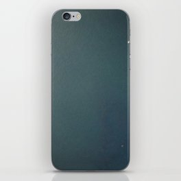 Udaipur Blue Special Edition I iPhone Skin
