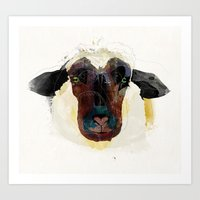 sheep Art Prints featuring sheep by Alvaro Tapia Hidalgo