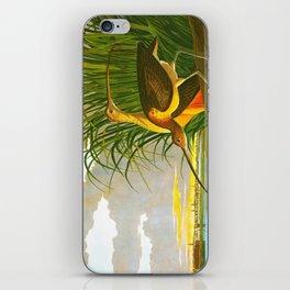 Long-billed Curlew Bird iPhone Skin
