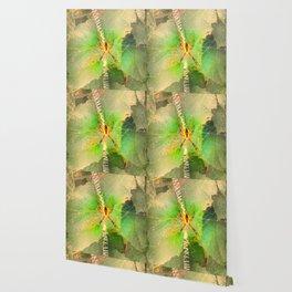 Orb Spider Wallpaper