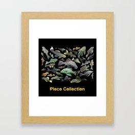 Pleco(Plecostomus) Framed Art Print