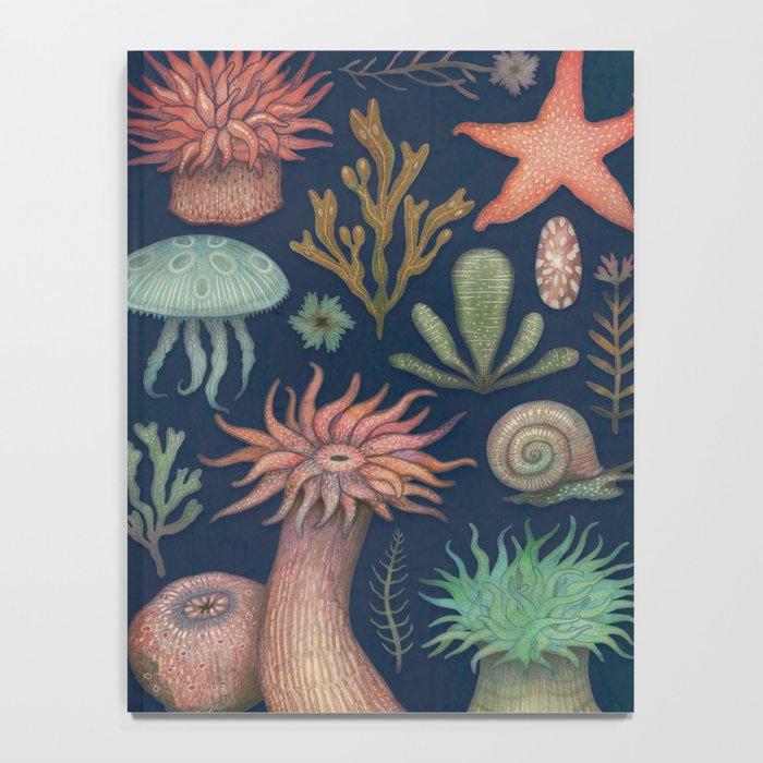 Aequoreus Vita Notebook