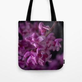 Red Bud Blossoms  Tote Bag