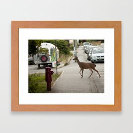 Curious Deer Framed Art Print