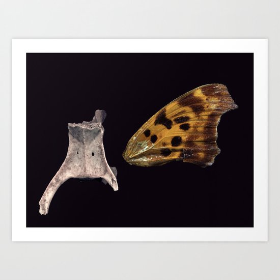 Backbone and Butterfly Wing Art Print