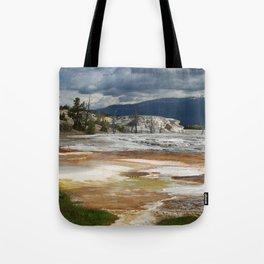 Grassy Spring View Tote Bag