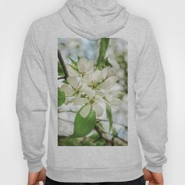 the Apple blossoms Hoody