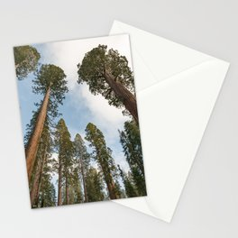 Redwood Sky - Giant Sequoia Trees Stationery Cards
