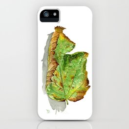 Hazelnut leaf in autumn iPhone Case