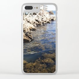 Cold Maine Waters Clear iPhone Case