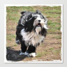 Tibetan Terrier Art Canvas Print