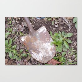 Rusty Old Shovel, Rusted Shovel In the Weeds, Old Used Shovel Canvas Print