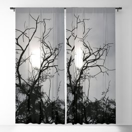 Silhouette Nightshine Blackout Curtain