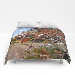 Sandia Leaves Comforters