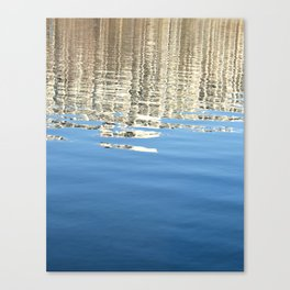 White Water Reflection Canvas Print