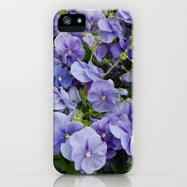 Pansy flower iPhone Case