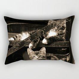 Back street Cats Rectangular Pillow