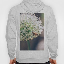 Drunk on Pollen Hoody