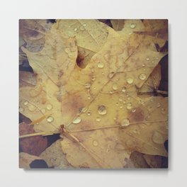 Drops on Golden Leaves Metal Print