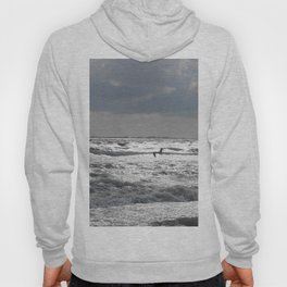 Seagull at Sunset Hoody