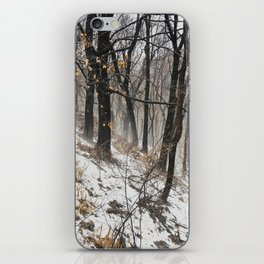 Winter at the park iPhone Skin