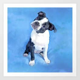 Cute Boston Terrier Puppy Painting Art Print