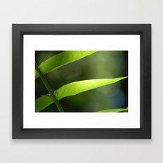 Light through the Leaves Framed Art Print