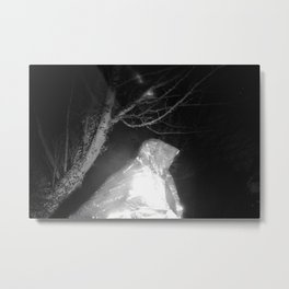 Nala/Olympia: A Case Study - Dream 03 Metal Print