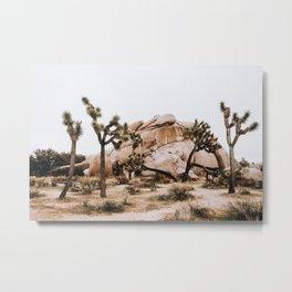Joshua Tree II / California Desert Metal Print