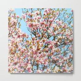 Vibrant Magnolias Metal Print