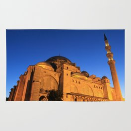 Suleymaniye mosque in istanbul Rug