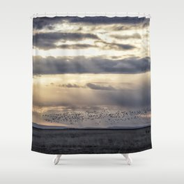 Birds Over Burns Shower Curtain