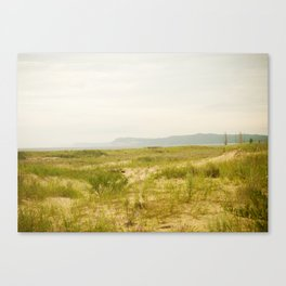 Peterson Beach Dune Grass Canvas Print