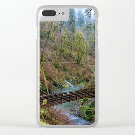 Silver Falls State Park Clear iPhone Case