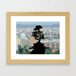 Bonsai Framed Art Print