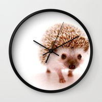 hedgehog Wall Clocks featuring Hedgehog by Derek Doi