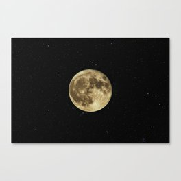 Moon and Stars Canvas Print