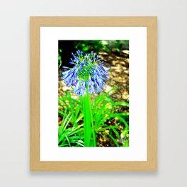 PurpleFlowers2 Framed Art Print