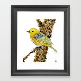 Yellow Warbler Tilly Framed Art Print
