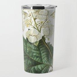 Oakleaf hydrangea (Hydrangea quercifolia) from Traite des Arbres et Arbustes que lon cultive en Fran Travel Mug