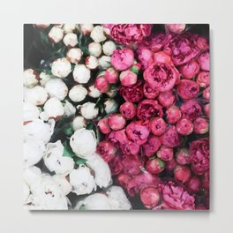 Flowers white and pink Metal Print