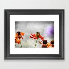 Gentle dream Framed Art Print