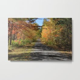 A Walk With Nature - Autumn Photography Metal Print
