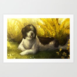 Jake: Sheepdog Portrait Art Print